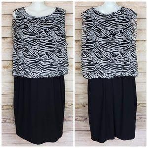 Dress Barn Black and Gray Zebra Print Dress